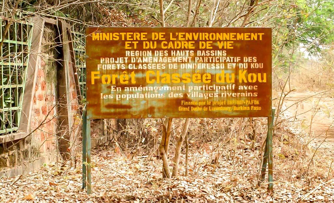 Forêt classé de Kou