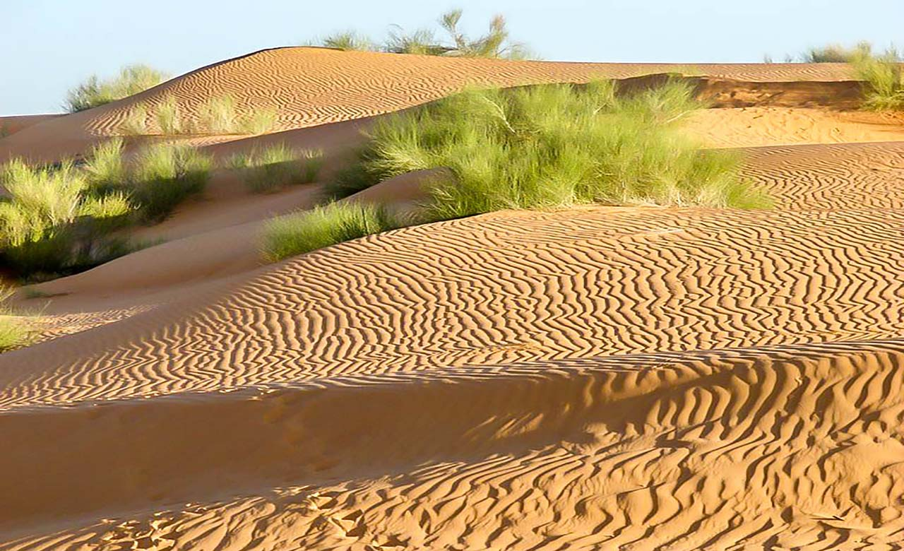 La zone Sahelienne