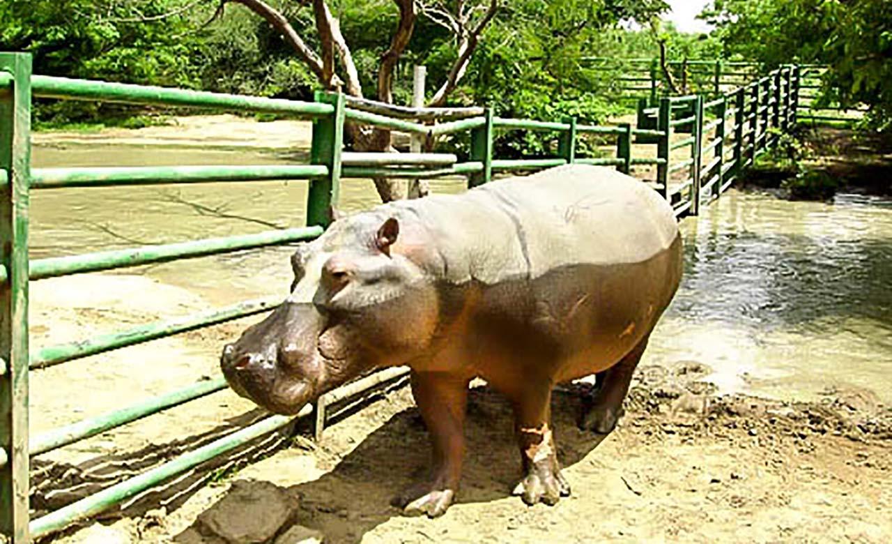Parc animalier de Ziniaré